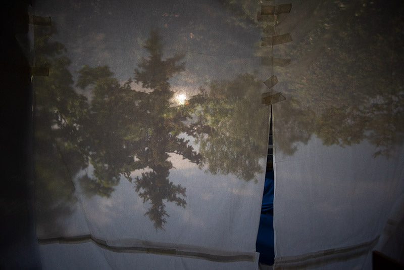 Both the upside-down and right-side-up Camera obscura images are seen projected on a semi-transparent canvas background.