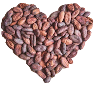 Cacao Heart Health