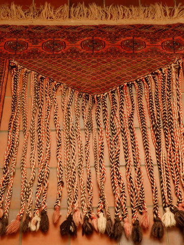 A lovely old decorative tent hanging like this piece from Afghanistan would make a really interesting wall hanging.