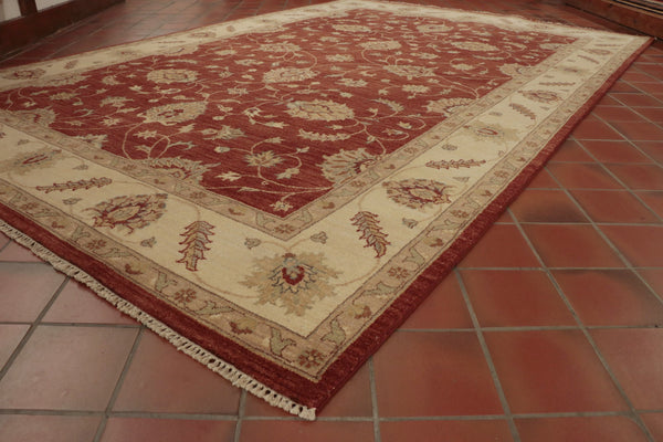 This rug has a terracotta background and cream border.