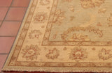 The buttery cream outer border is framed by two narrow bands which are Tan in colour with small repeating motifs.
