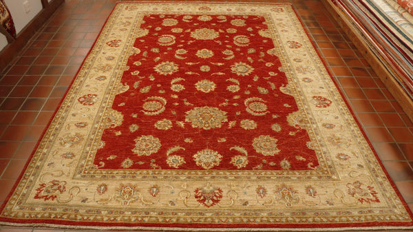 This Afghan Ziegler has a stunning, intricate floral design both in the main section and in the borders.  The main ground is terracotta red.   With the borders being golden soft yellow, ochre and terracotta highlights.  Silk work outlines some of the areas adding to the piece's beauty.