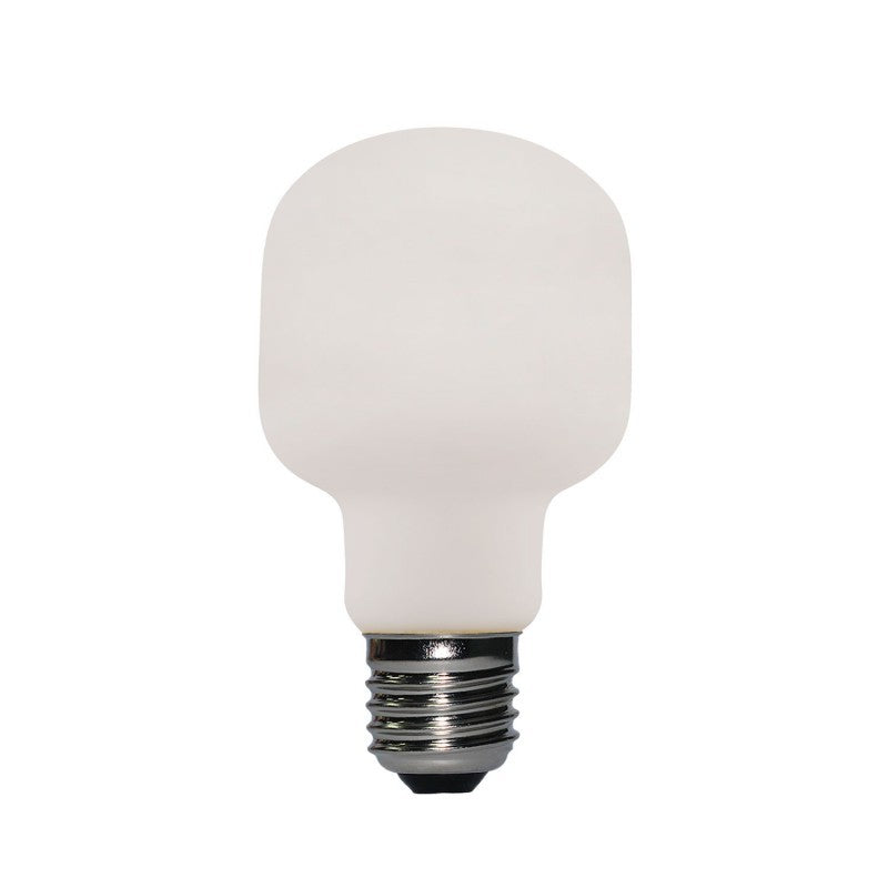 Classic A60 Led Porcelain Light Bulb A60 6W E27 Dimmable 2700K