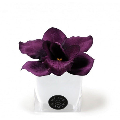 Love Couture Purple Orchid