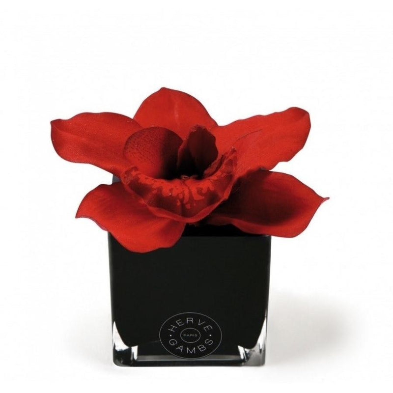 Love Couture Red Orchid - Scent City