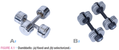 Fixed dummbell versus selectorized dumbbell photo