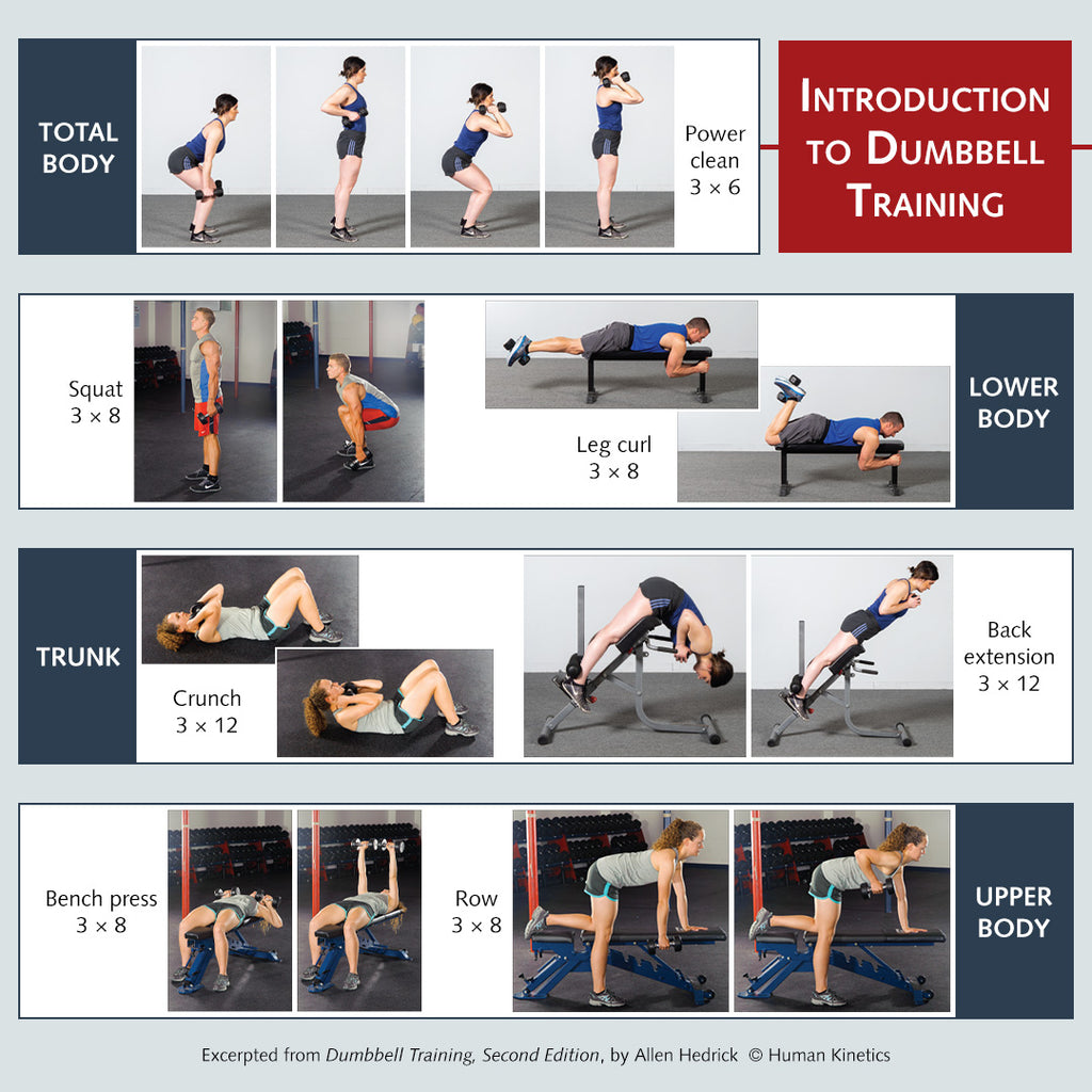 Introduction to Dumbbell Training