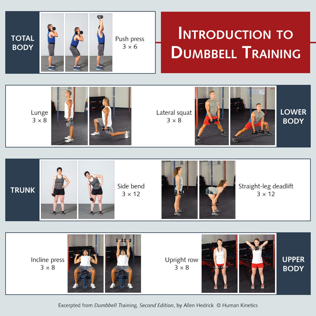 Introduction to dumbbell training workout