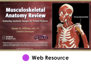 Musculoskeletal Anatomy Review