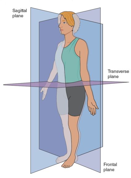 Six facets of the Power Yoga for Sports system – Human Kinetics