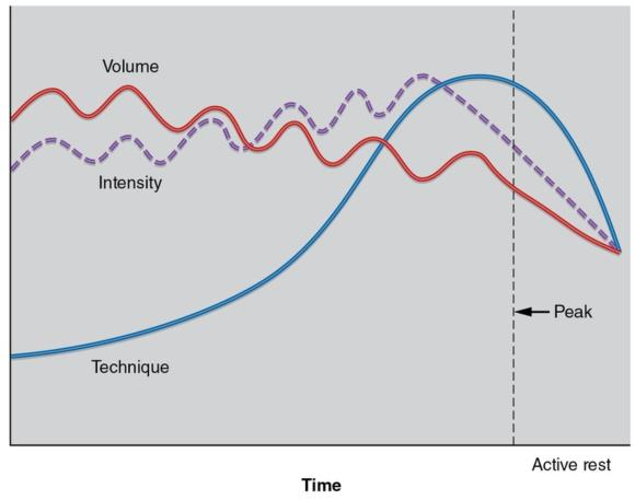 Figure 15.2 The model of undulating periodisation.