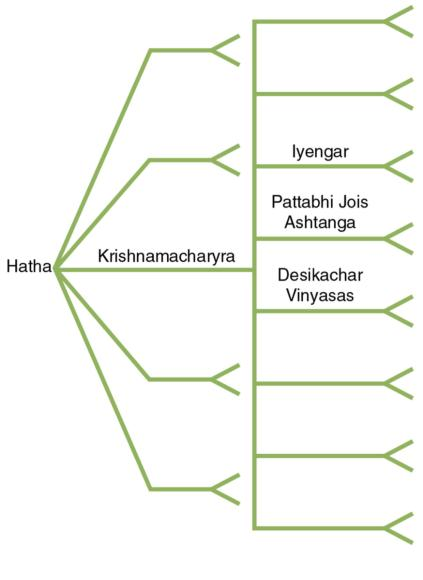 Figure 1.3 Hatha yoga lineage. The blank lines represent other lineages.