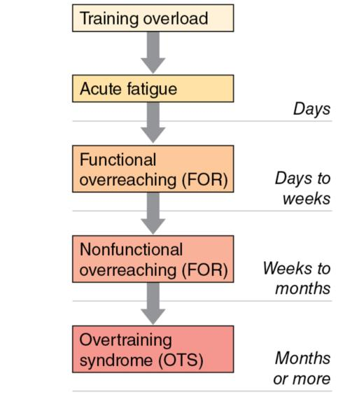 Figure 5.6 The overtraining continuum.