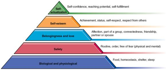 Figure 3.1 Maslow's hierarchy of needs.