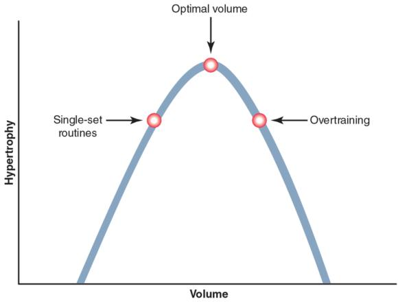 Figure 2.1 Dose - response relationship between volume and hypertrophy.