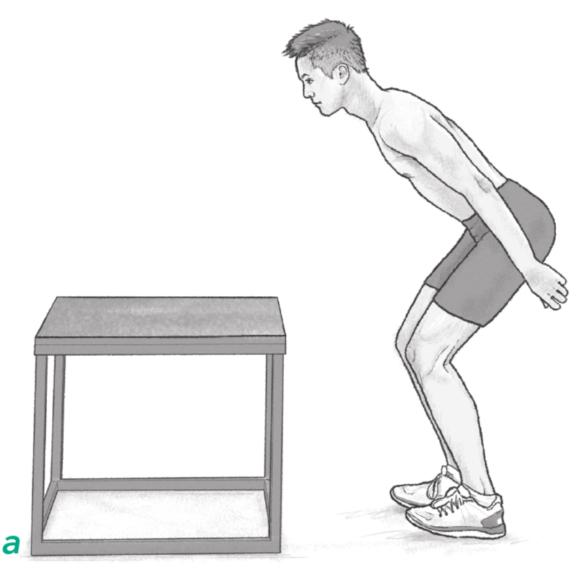 Figure 2.1 Static start positions for jumps onto a box: little knee flexion; deeper knee bend.