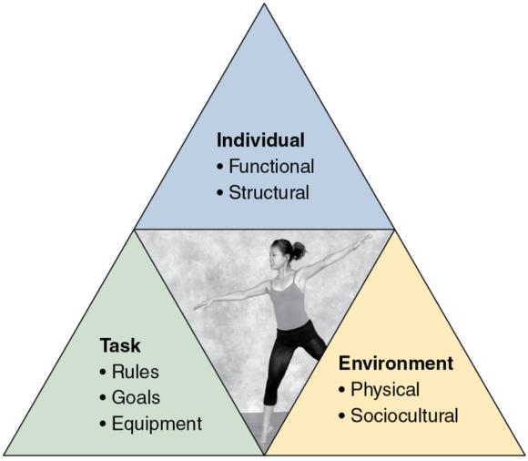 Figure 18.1 Model of the three constraints: individual, task, and environment.