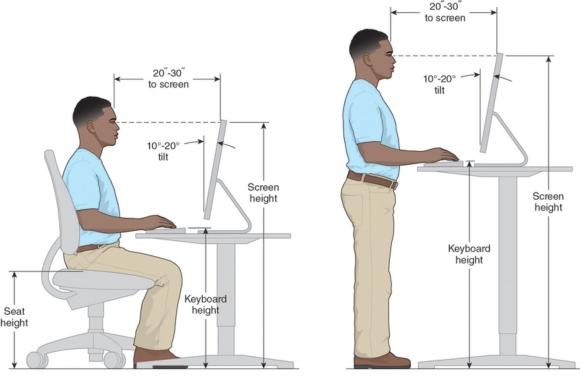 Figure 13.1 Computer workstation anthropometrics for seated () and standing () operators.