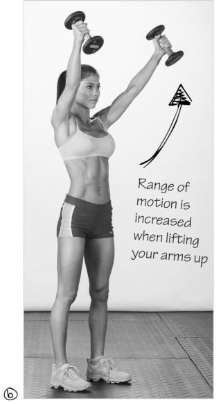 Range of motion is increased when lifting your arms up
