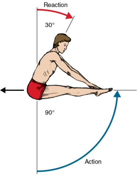 Figure 7.8 When the diver's extended legs are raised 90° in a counterclockwise direction, the upper body reacts by moving 30° in a clockwise direction.