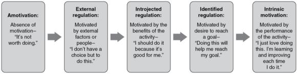 Figure 3.1 The self-determination continuum as related to physical activity (Deci & Ryan, 1985; Vallerand & Losier, 1999).