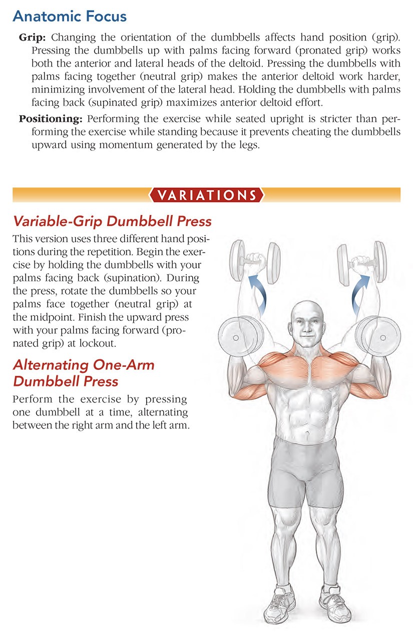 Dumbbell Shoulder Press – Human Kinetics