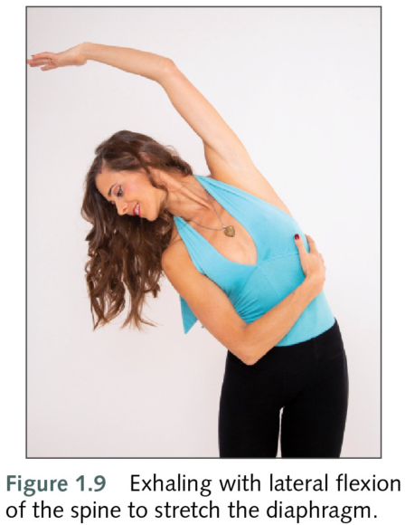 Strengthening and Stretching Routine for the Diaphragm