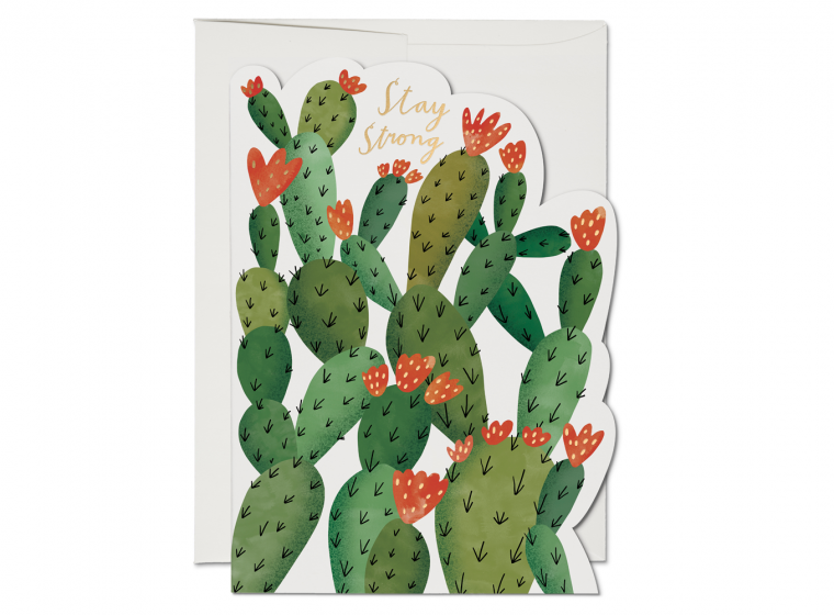 Stay Strong Cactus Greeting Card