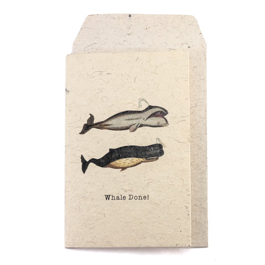 Whale Done Greeting Card