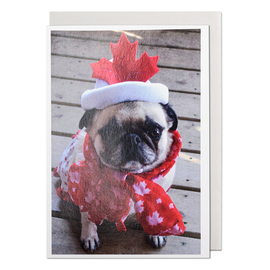 Happy Holidays Canada Pug Greeting Card