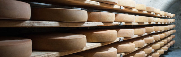 Keep Fromage Fresh: How to Store Cheese