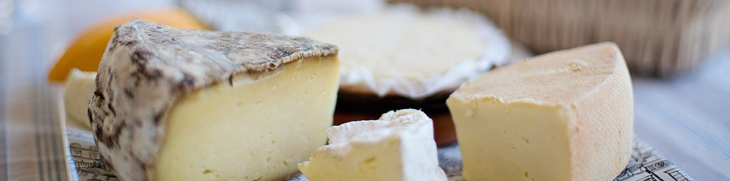 How to Make Cheese: A Simple FAQ to Get You Started