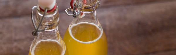 Make Your Gut Happy: Introducing Kombucha Making Kits!