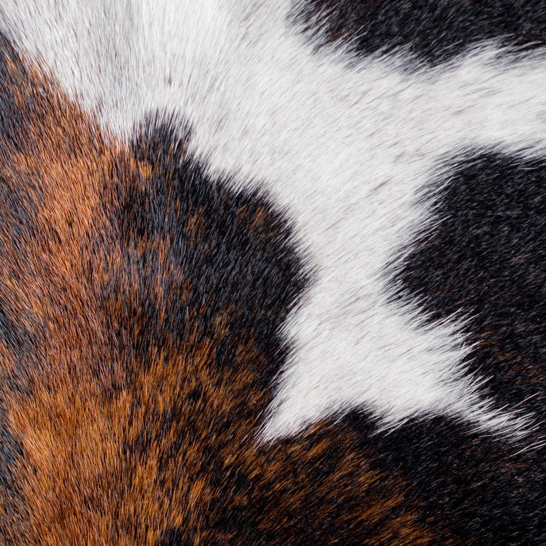 Large Brown and white Cowhide floor mat on a studio
