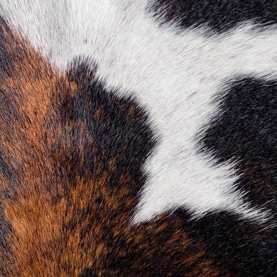 Texture close up. Black and Caramel Large Cowhide Rug, Cowhide Leather Rugs, Home Décor Ideas, Large Rugs, White, Cow hide.Home Hair on hide Floor