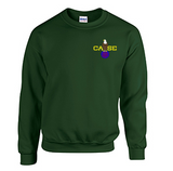 Crew Neck Sweatshirt with Case Color Logo