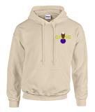 Hoodie with Case Color Logo