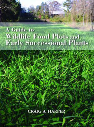 A Guide To Wildlife Food Plots And Early Successional Plants