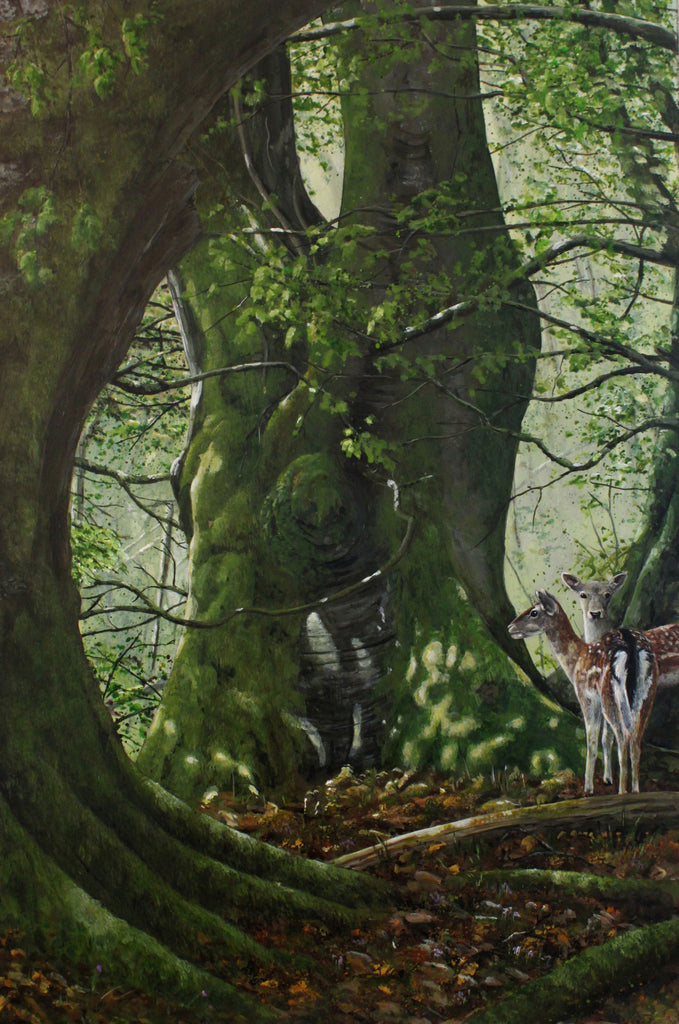 limited_edition_print_original_painting_ian_griffiths_woodland_deer