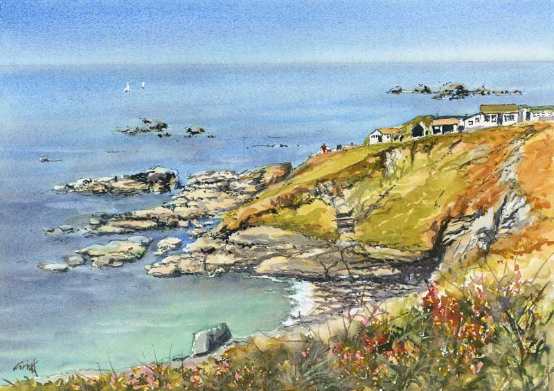 Lizard point. Signed print 8 x 6 inches – ART