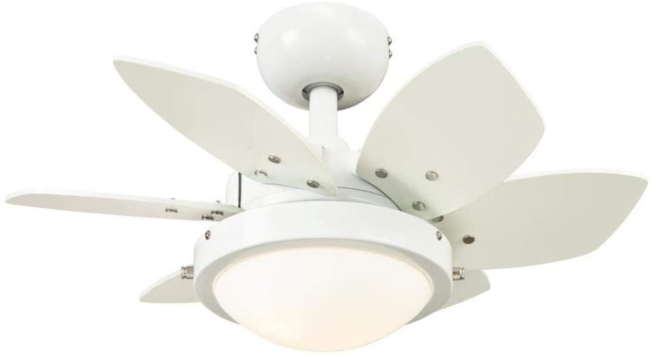 24 Inch Quince Indoor Ceiling Fan in White Finish with Dimmable LED Light Fixture in Opal Frosted Glass with Reversible White/Beech Blades
