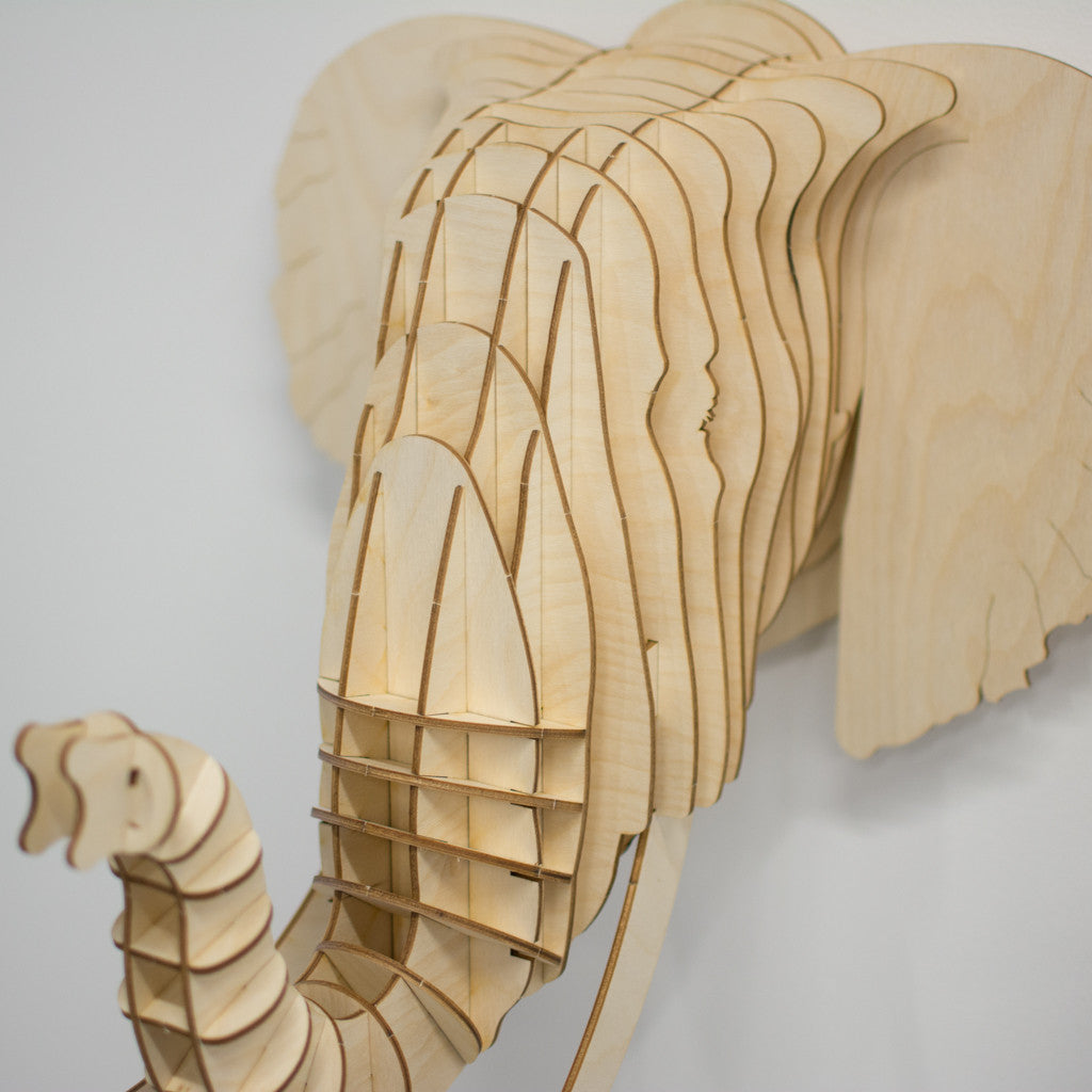 Eyan the Birch Wood Elephant Head