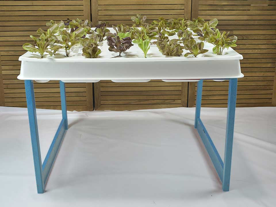 Hydroponic System, Agrow Blue, Agrowbot 528h, 60 plants in 12sq ft, Hydroponics Made Easy, On Sale Now