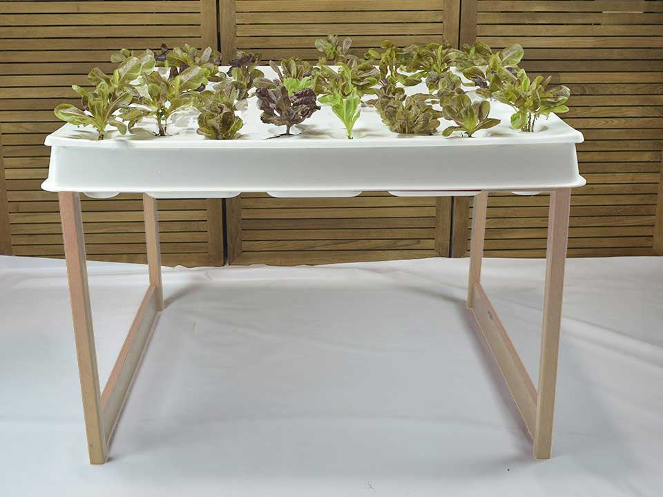 Hydroponic System, Raw Wood Agrowbot 528h, 60 plants in 12sq ft, Hydroponics Made Easy, On Sale Now