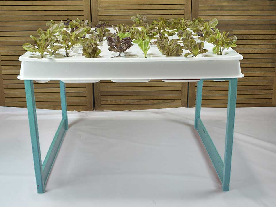 Hydroponic System, Sea Breeze Green, Agrowbot 528h, 60 plants in 12sq ft, Hydroponics Made Easy, On Sale Now