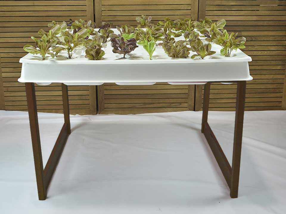 Hydroponic System, Stained Wood Agrowbot 528h, 60 plants in 12sq ft, Hydroponics Made Easy, On Sale Now