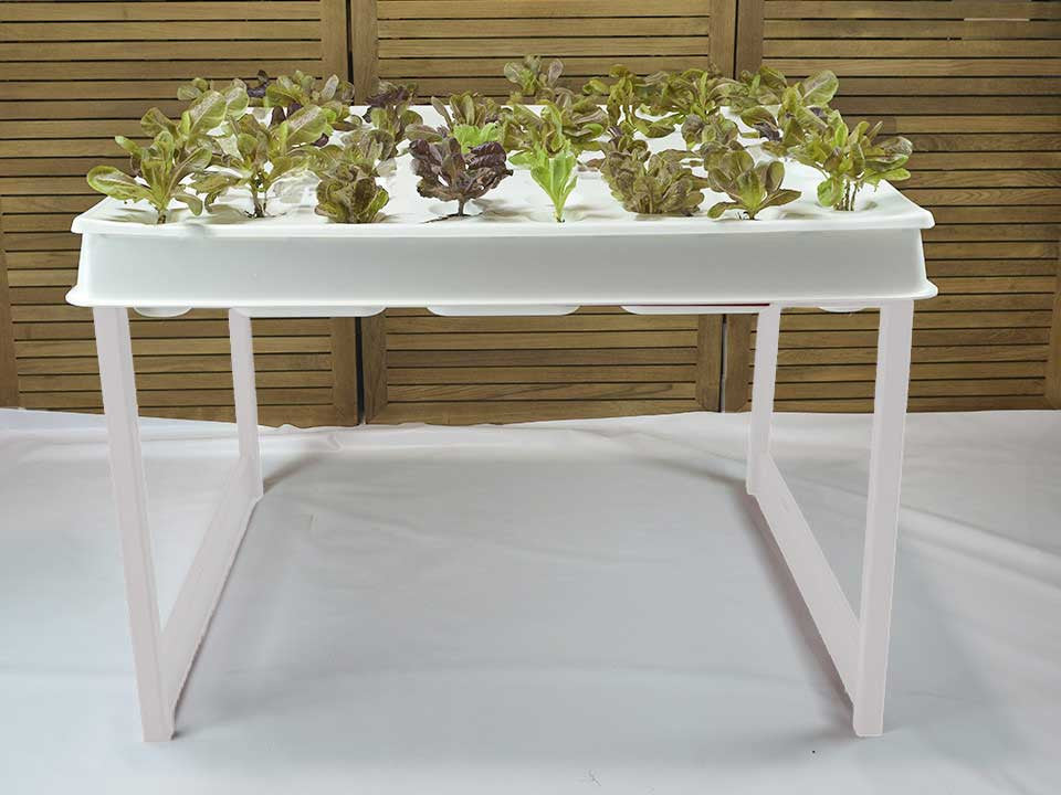 Hydroponic System, Bright White Agrowbot 528h, 60 plants in 12sq ft, Hydroponics Made Easy, On Sale Now