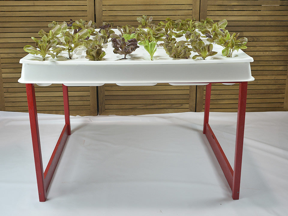 Hydroponic System, Ruby Red Agrowbot 528h, 60 plants in 12sq ft, Hydroponics Made Easy, On Sale Now