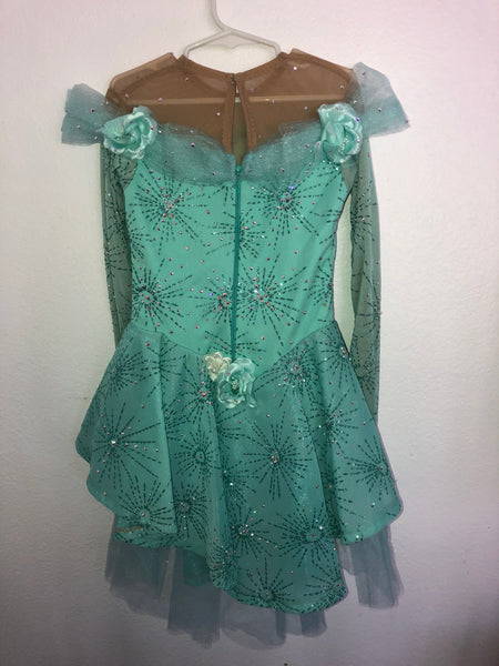 Mint Green Skating Dress/Costume