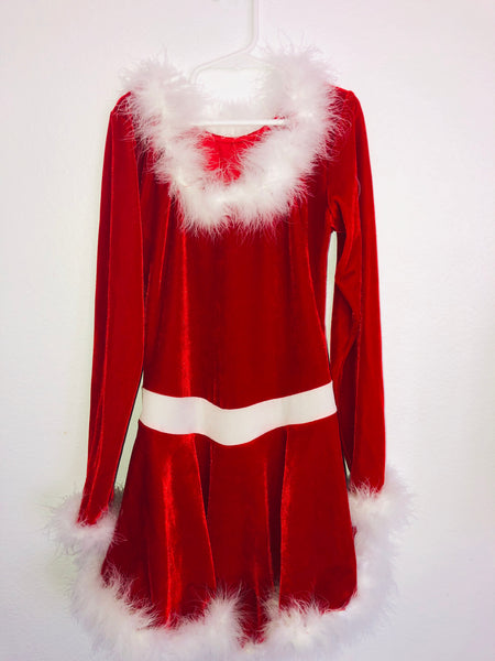 Santa Baby Skating Dress -- Size Adult Small